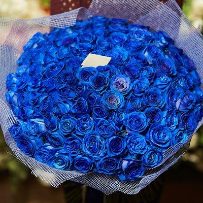 101 Blue Rose