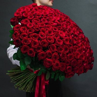 201 Red Roses